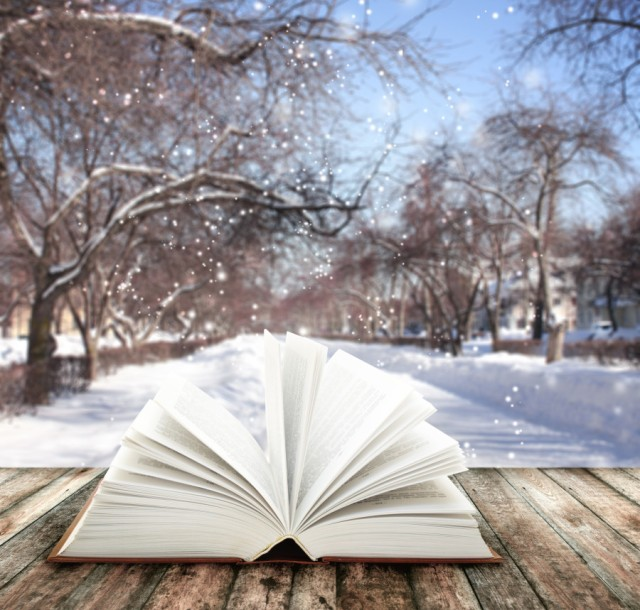 snow-falling-books-calling